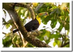 Costa Rica-044