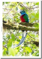 Costa Rica-058