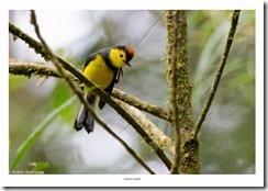 Costa Rica-167